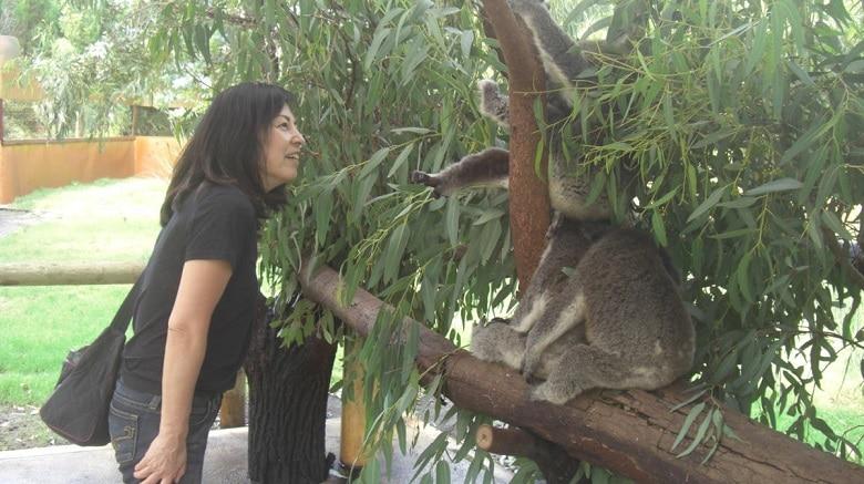 スコータイ/オーストラリア旅行記