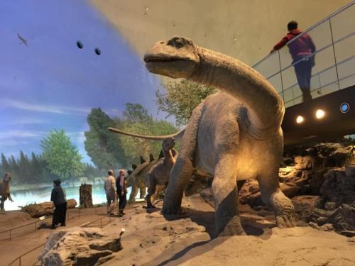 2018-11-12 恐竜博物館